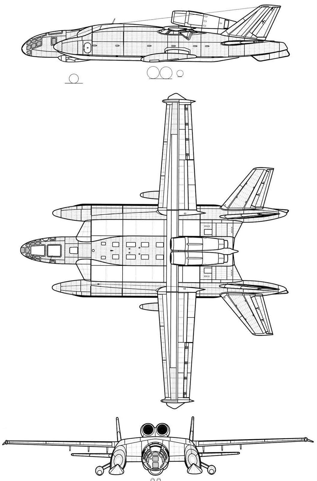 berievVVA14-3v.jpg
