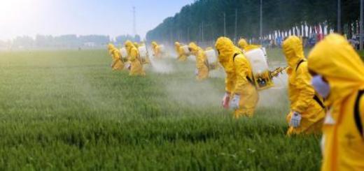 Американские фермеры вывели суперсорняк